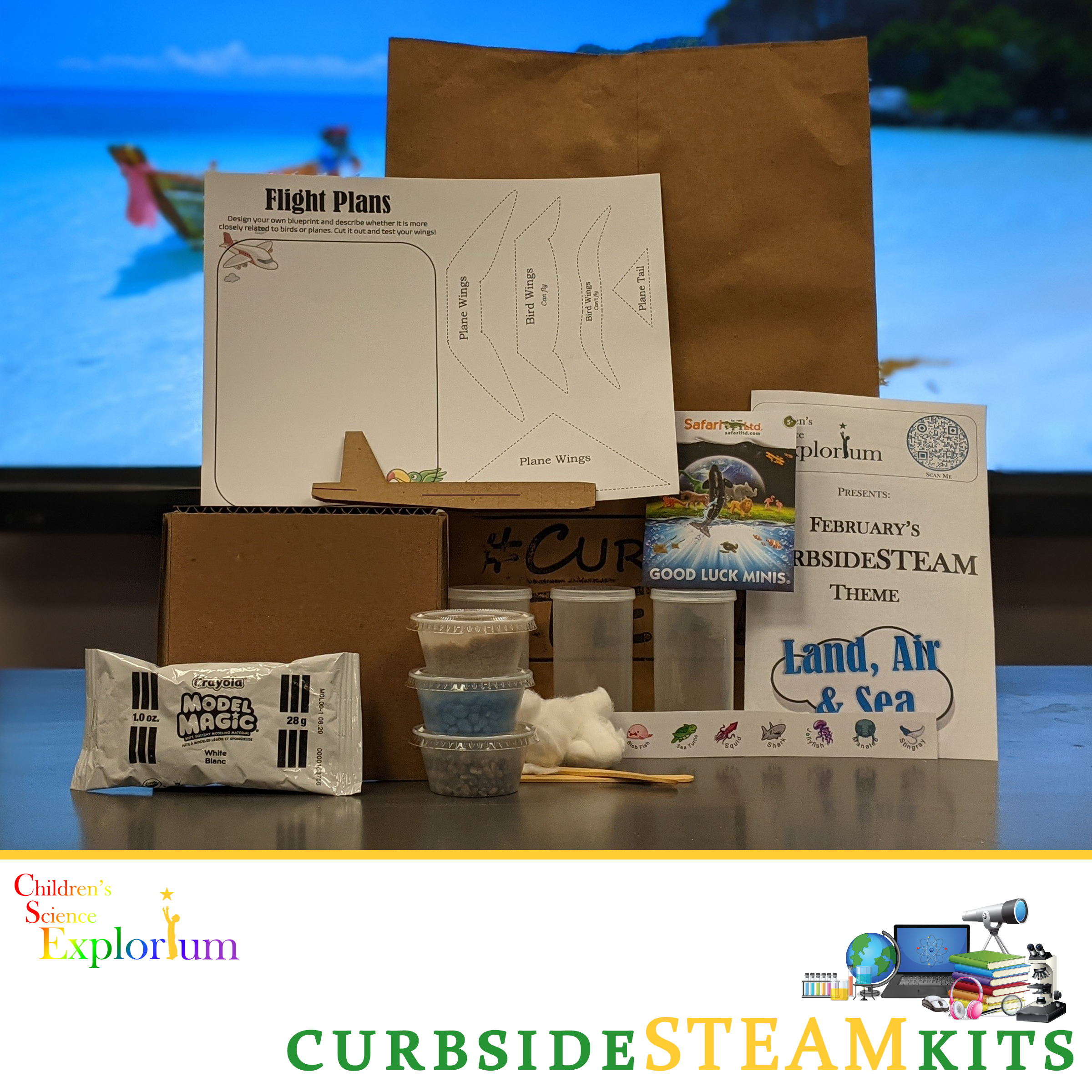 Curbside STEAM Activities for February