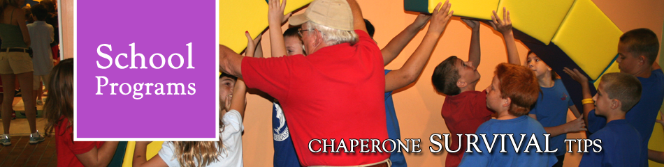 Chaperone Survival Tips